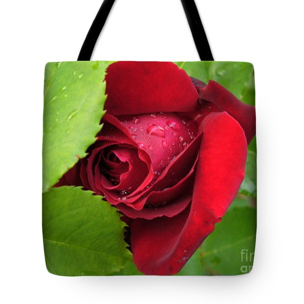 Don't Cry For Me Rosanna Tote Bag by Lingfai Leung