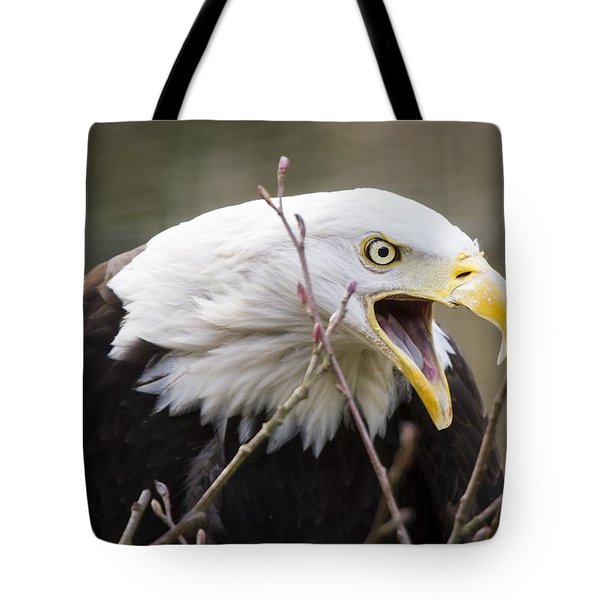 Don't Mess With This One Tote Bag