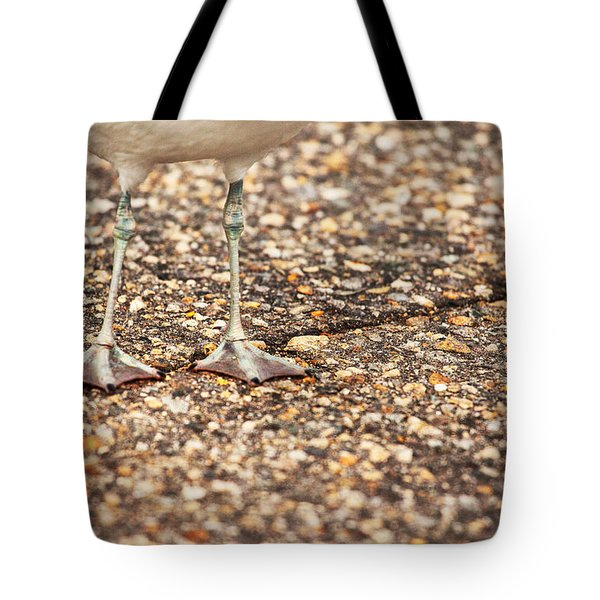 Don't Step On The Crack Tote Bag by Karol Livote