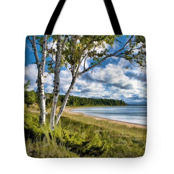 Door County Europe Bay Birch Tote Bag by Christopher Arndt