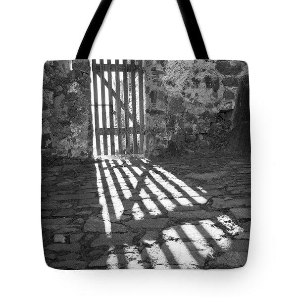Door In The Sun Tote Bag