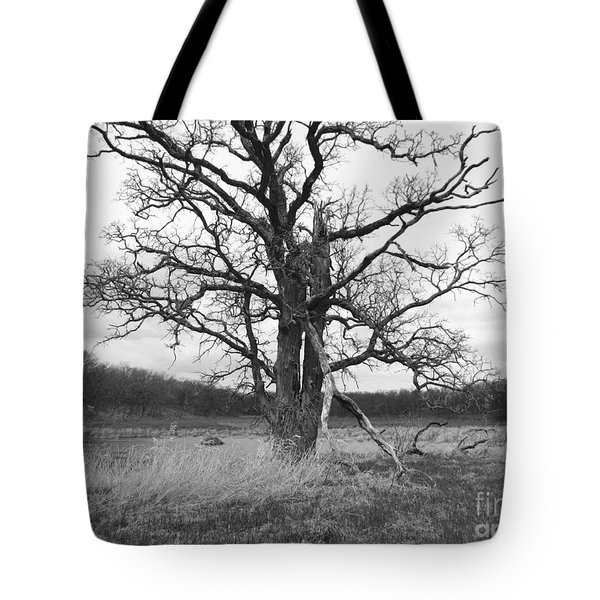 Dormant Beauty Bw Tote Bag