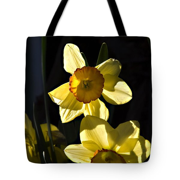 Tote Bag featuring the photograph Dos Daffs by Joe Schofield