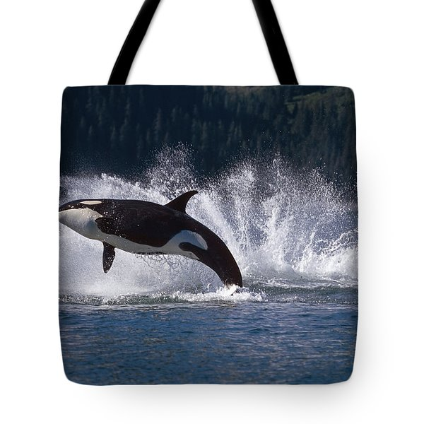 Double Breaching Orcas Bainbridge Tote Bag