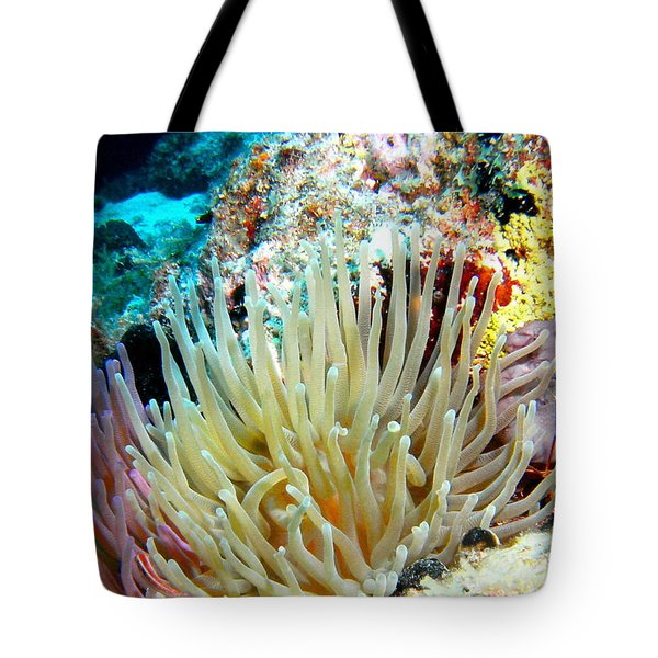 Tote Bag featuring the photograph Double Giant Anemone And Arrow Crab by Amy McDaniel