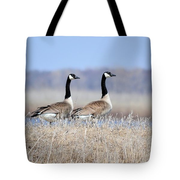Double Vision Tote Bag by Bonfire Photography