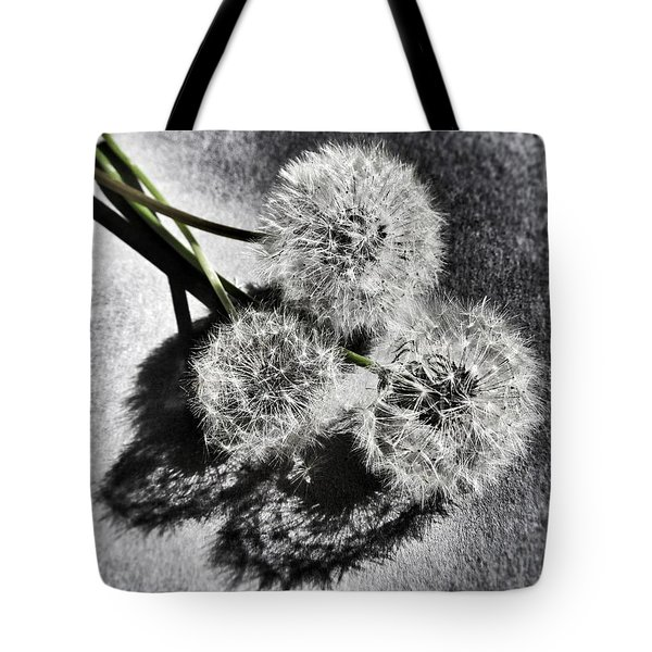 Doubled Wishes Tote Bag by Marianna Mills