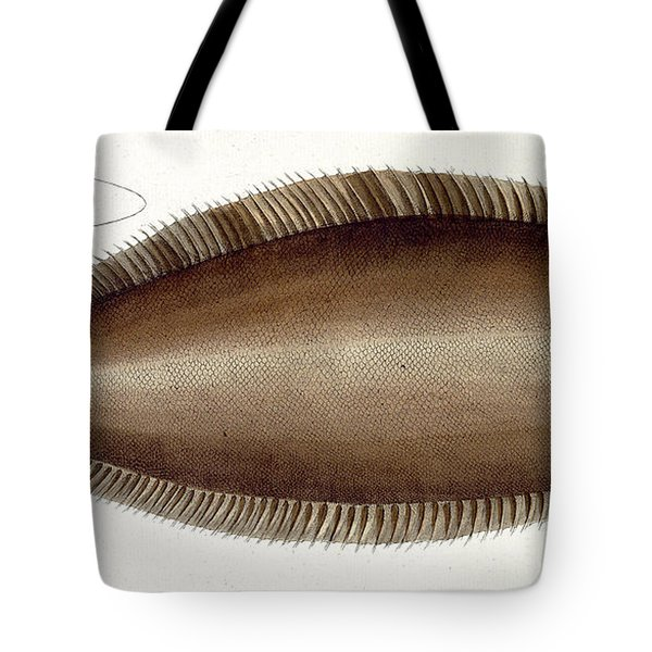 Dover Sole Tote Bag by Andreas Ludwig Kruger