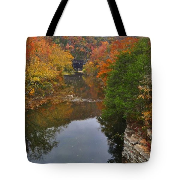 Down From Ponca Tote Bag by Marty Koch