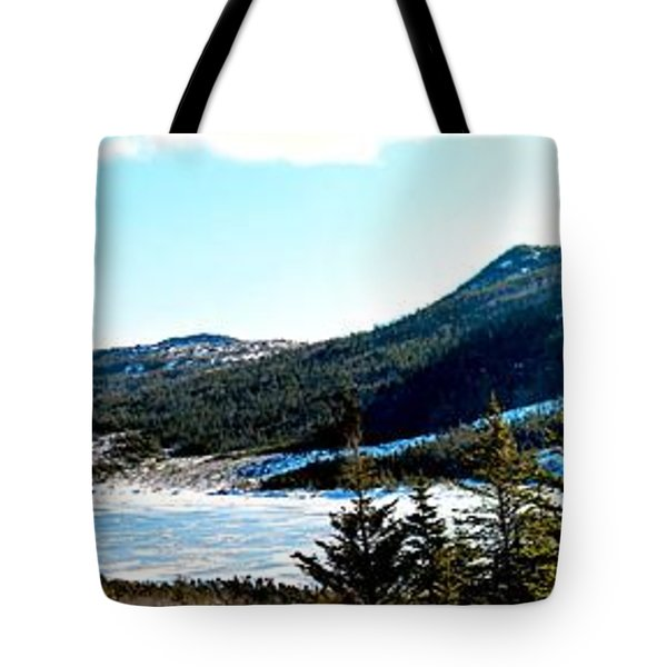 Down In The Valley Triptych Tote Bag by Barbara Griffin