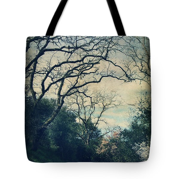 Down That Path Tote Bag by Laurie Search