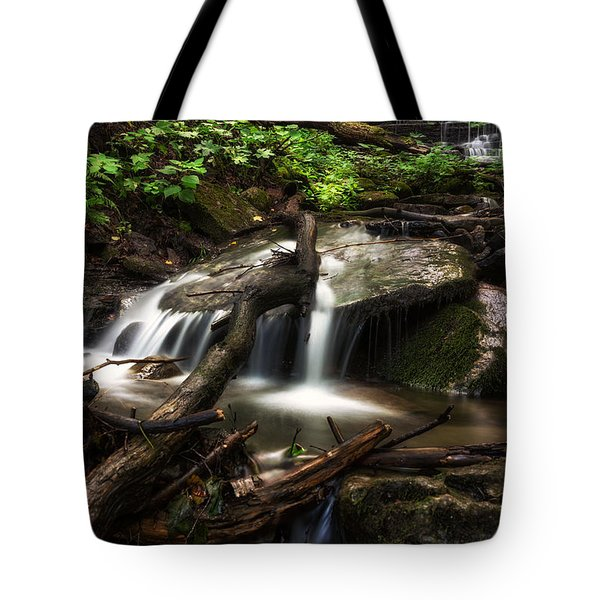 Downstream Tote Bag by Mark Papke