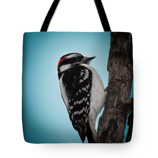 Downy Tote Bag by Bianca Nadeau