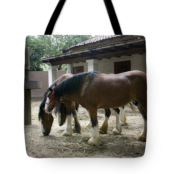 Draft Horses Tote Bag by Lynn Palmer