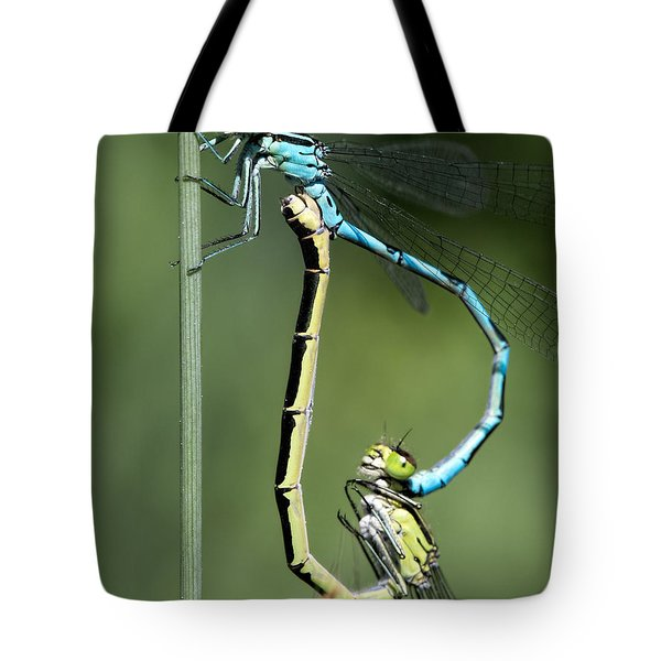 Tote Bag featuring the photograph Dragon Fly by Leif Sohlman