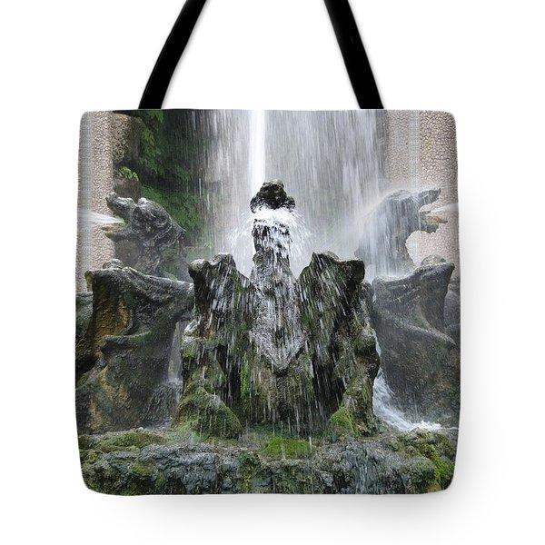 Dragon Fountain Tote Bag