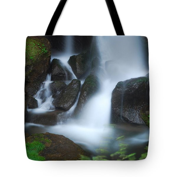 Dragon Head Falls Tote Bag by Jonah  Anderson