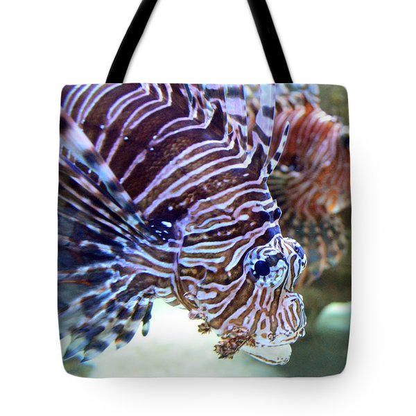 Dragonfish In Tandem Tote Bag by Sandi OReilly