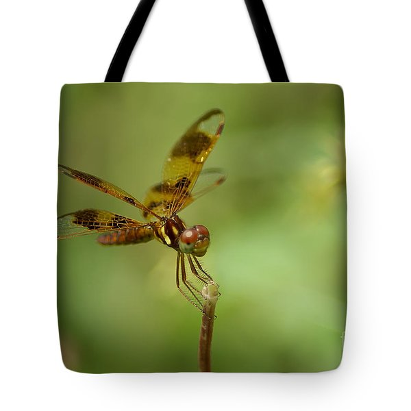 Tote Bag featuring the photograph Dragonfly 2 by Olga Hamilton