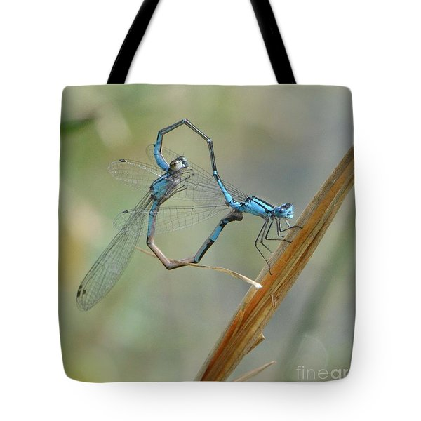 Dragonfly Courtship Tote Bag by Amy Porter
