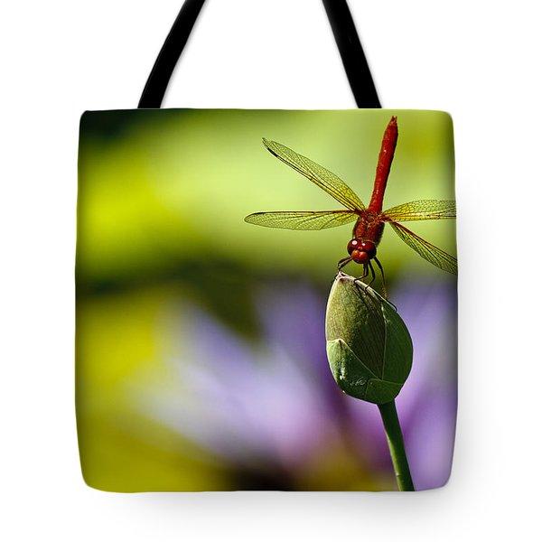Dragonfly Display Tote Bag