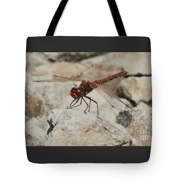 Dragonfly Tote Bag by J L Zarek