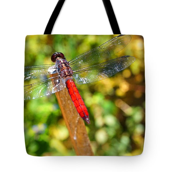 Dragonfly Tote Bag by Julia Ivanovna Willhite