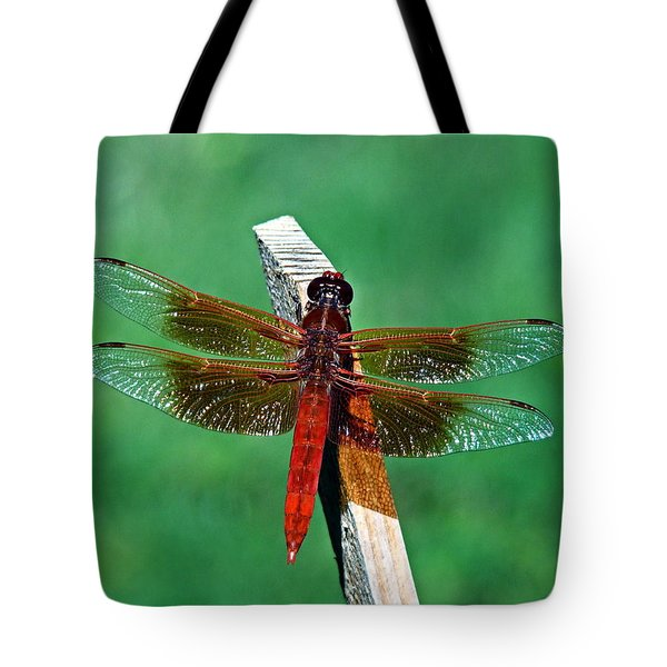 Dragonfly Tote Bag by Nick Kloepping