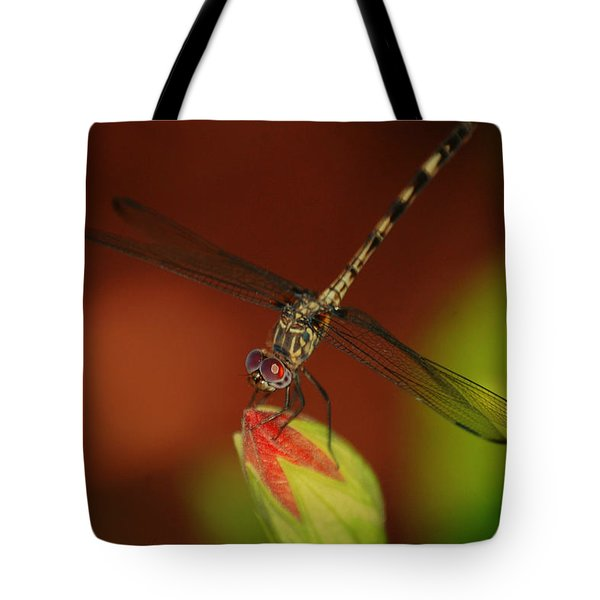 Tote Bag featuring the photograph Dragonfly On Hibiscus by Leticia Latocki