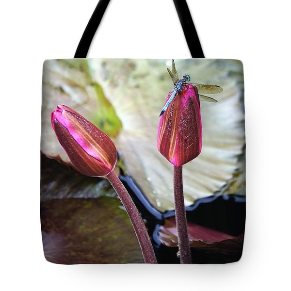 Dragonfly On Lotus Tote Bag