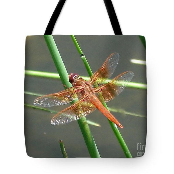 Tote Bag featuring the photograph Dragonfly Orange by Kerri Mortenson