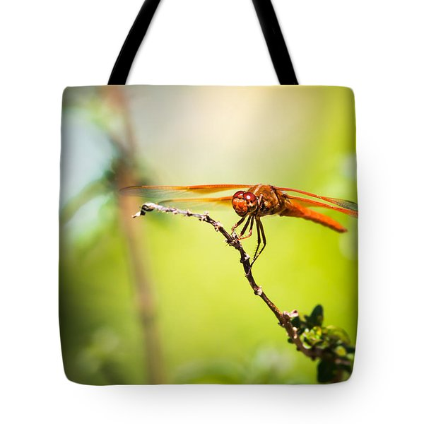 Dragonfly Smile Tote Bag by Priya Ghose