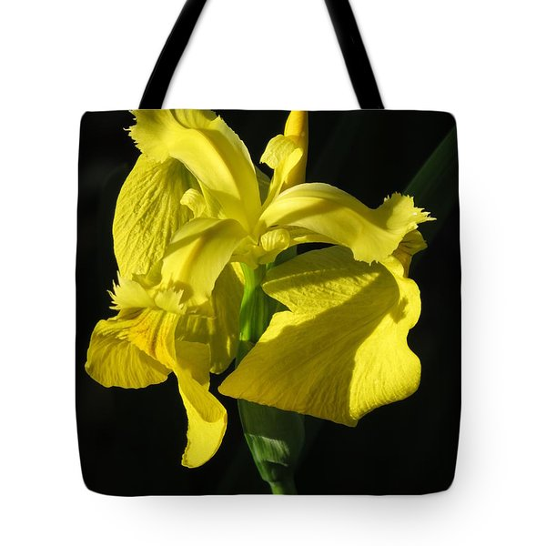 Tote Bag featuring the photograph Drama Queen by Phyllis Beiser