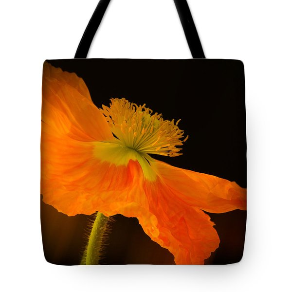 Dramatic Orange Poppy Tote Bag