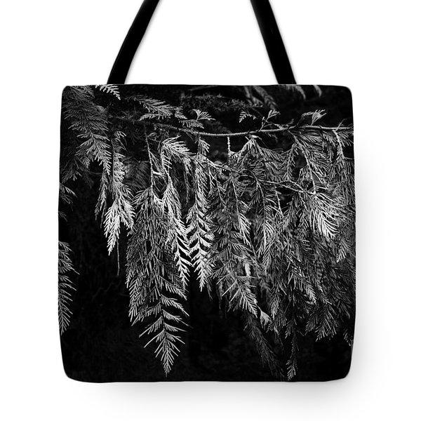 Draping Cedar Tote Bag