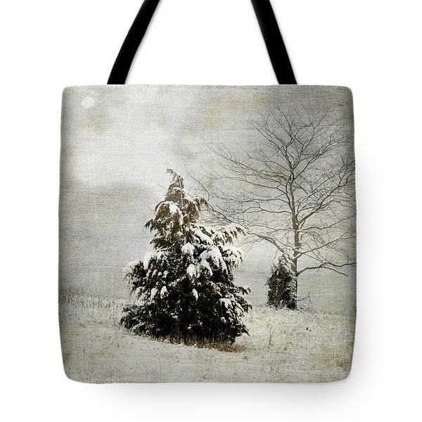 Dread Of Winter Tote Bag by Julie Palencia