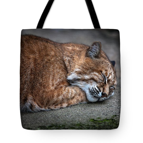 Dream Tote Bag by Hayato Matsumoto