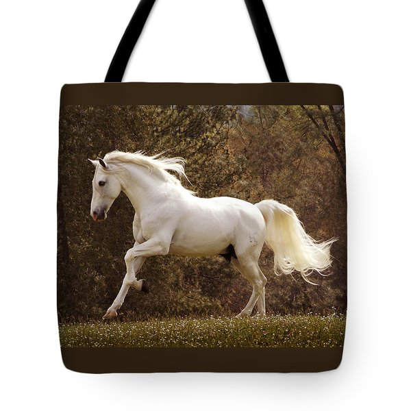 Dream Horse Tote Bag