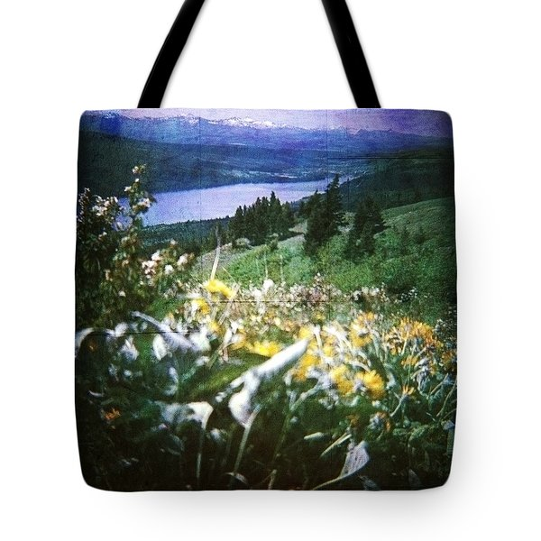Tote Bag featuring the photograph Dream In East Glacier by Carol Whaley Addassi
