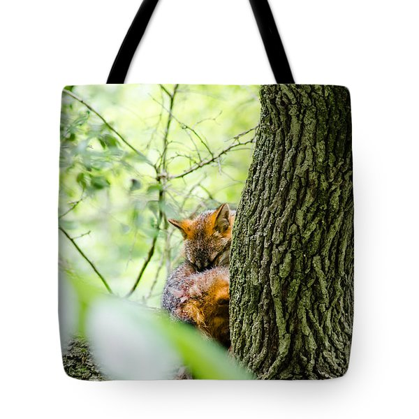 Dreaming Above All Tote Bag