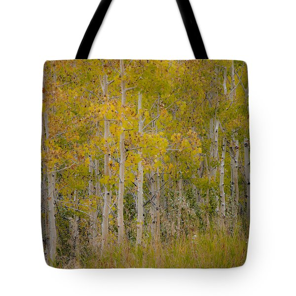 Dreaming Of Fall Tote Bag