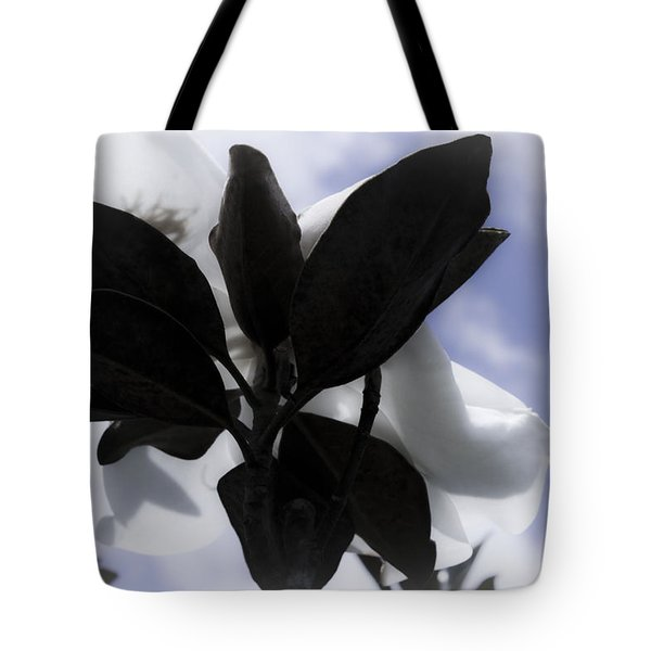Tote Bag featuring the photograph Dreams In The Sky by Janie Johnson
