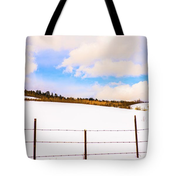 Dreamtime Tote Bag by Sandi Mikuse