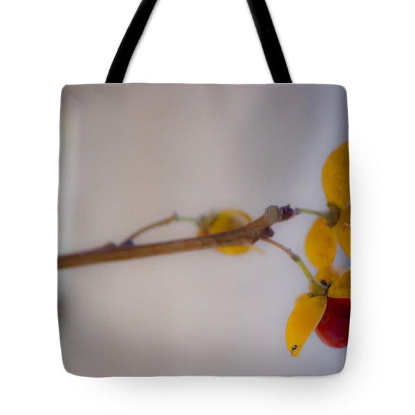 Dreamy Bittersweet Tote Bag by Teresa Mucha