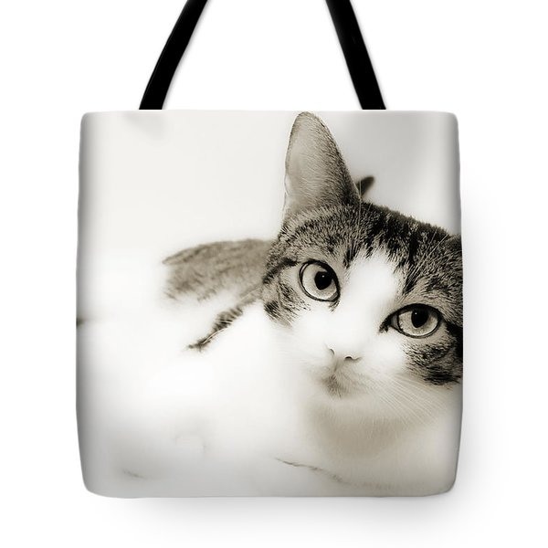 Dreamy Cat 2 Tote Bag by Andee Design