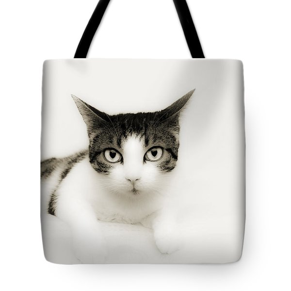 Dreamy Cat Tote Bag by Andee Design