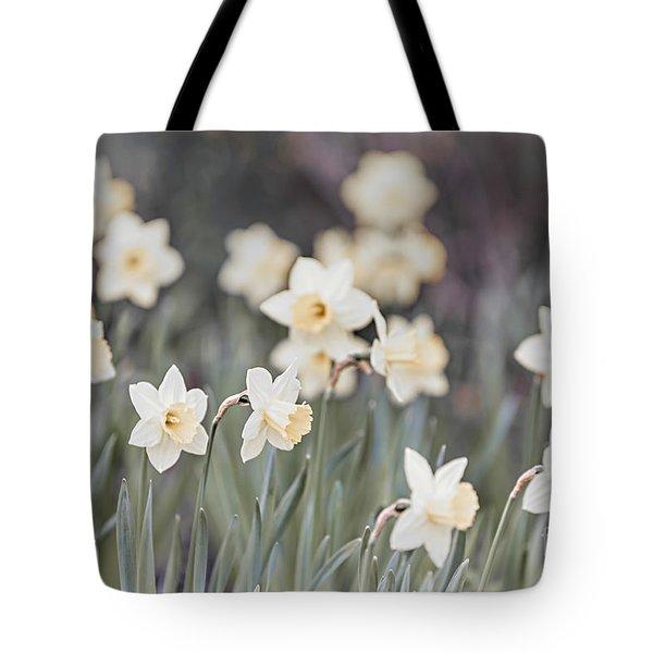 Dreamy Daffodils Tote Bag by Elena Elisseeva