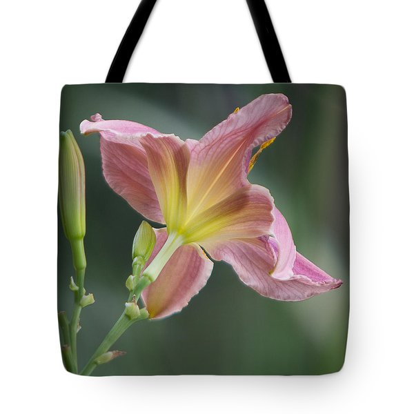 Tote Bag featuring the photograph Dreamy Daylily by Patti Deters