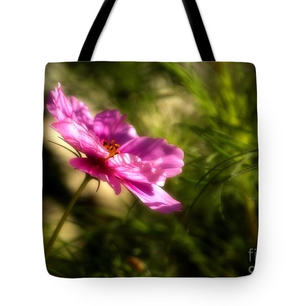 Dreamy Pink Comos Tote Bag