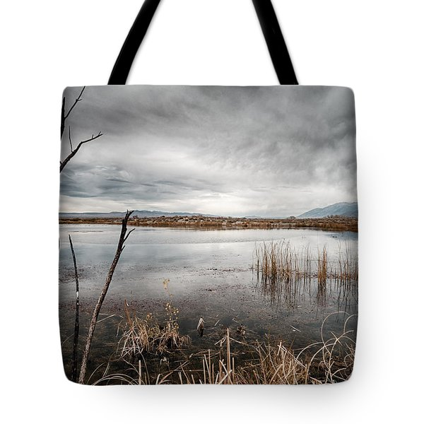 Dreary Tote Bag by Cat Connor